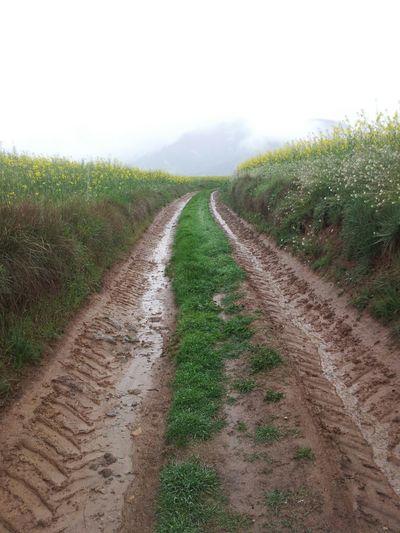 Rain Path Osona