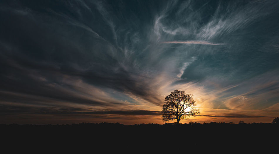 Silhouette trees on field against dramatic sky during sunset