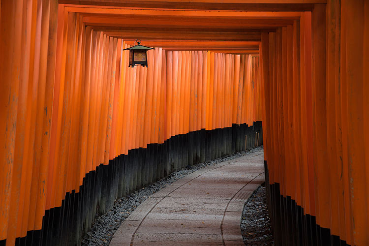 The red torii gates walkway path at fushimi inari taisha shrine the one of attraction landmarks for tourist in Kyoto, Japan ASIA Ancient Architecture Fushimi Inari Taisha Shrine Japan Japan Photography Red Shinto Shrine Sightseeing Torii Gate Tourist Travel UNESCO World Heritage Site Wood Building Heritage Kyoto Landmark Landscape Pattern Peaceful Religion Temple Travel Destinations Zen