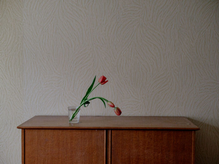 Deceptively Simple Soviet Era Tulips Beauty In Nature Decoration Flower Flower Arrangement Flower Collection Flower Head Flowering Plant Fragility Freshness Furniture Indoors  Nature No People Nostalgia Petal Red Simplicity Vase Vulnerability  Wall - Building Feature Wallpaper Wood - Material Moms & Dads