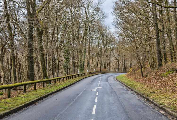 Image of an empty curved road in a forest in early spring. Tree Direction Road The Way Forward Transportation Diminishing Perspective No People Nature Empty Road Forest Tranquility Beauty In Nature Empty Non-urban Scene Outdoors Land Asphalt Asphalt Road Rural Scene Countryside Country Road Spring Springtime