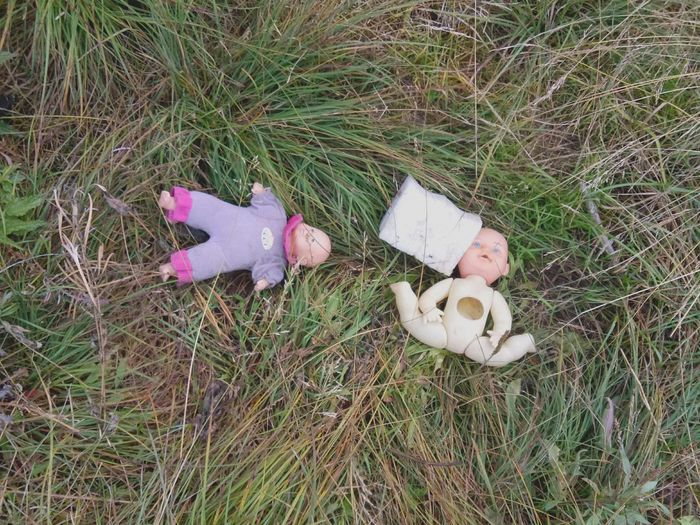 broken dolls 💔 Bkoren Broken Toys Broken Dolls Grass High Angle View Childhood No People Field Day Outdoors Abandoned Nature Dolls Toys Kids