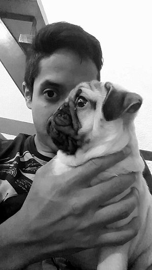 Taking Photos That's Me Hi! Hello World Me Eyes Pic Of The Day Night Photography Hecho En México B&w I & My Dog Left Eye Right Eye Pug