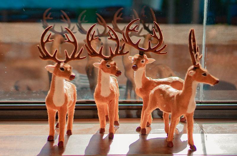 View of deer