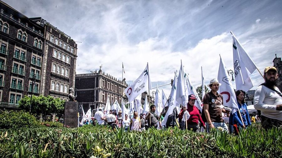 People on grass against sky
