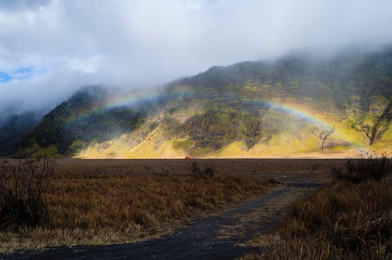 Beautiful Rainbows scenery in Bromo, Surabaya. Rainbow Bromo Mountain Teletubbies Hills Teletubbies Bromo Rainbow EyeEm Selects Amazing Scenery Bromo Tengger Semeru National Park Travel Destinations Environment Scenics - Nature Landscape Beauty In Nature Tranquil Scene Rainbow Land Tranquility Nature Cloud - Sky Plant Sky Field Non-urban Scene Mountain Outdoors No People Day Tree