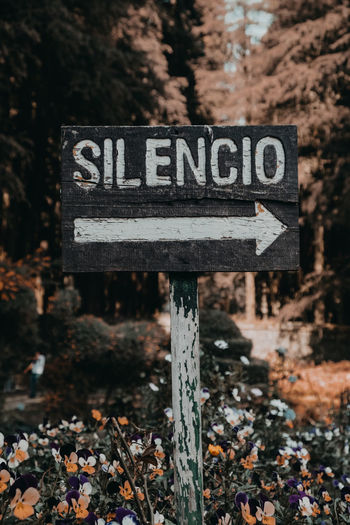 Señal de silencio Sign Communication Text Western Script Focus On Foreground Day Direction Guidance No People Information Information Sign Arrow Symbol Land Road Nature Road Sign Close-up Directional Sign Symbol Outdoors Arrow