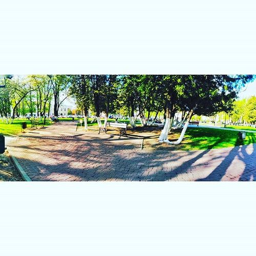 парк отдых досуг красота весна