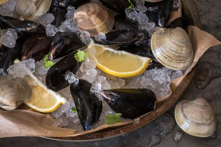 High angle view of mussels and clams with ice in plate