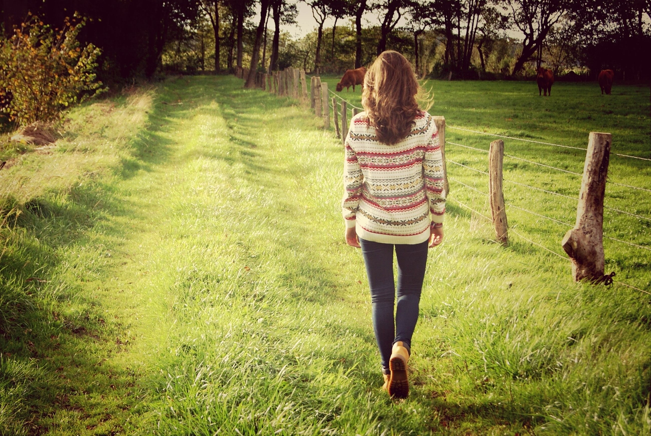 grass, green color, tree, lifestyles, field, full length, rear view, standing, walking, grassy, casual clothing, growth, leisure activity, person, nature, park - man made space, day, tranquility