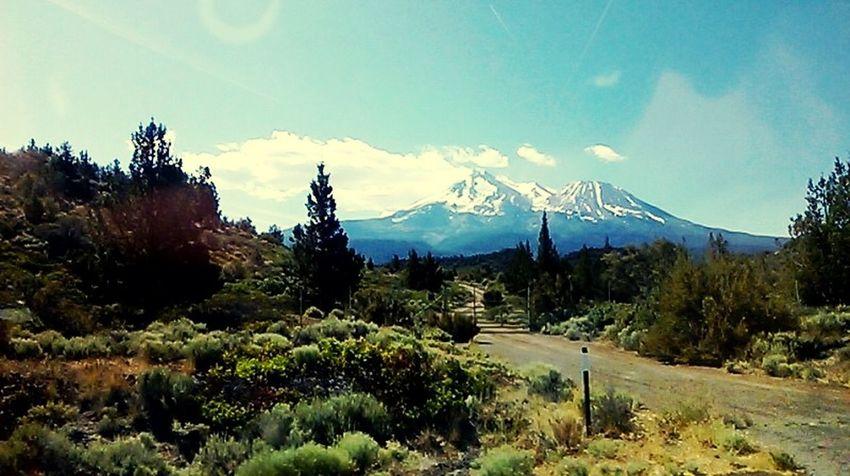 Artsy Spiritual Mt Shasta Vortex Mountain