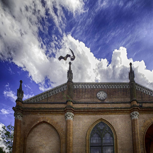 Acrobats https://www.youtube.com/watch?v=uTCPOhTDNI4&index=2&list=PL22027B6AE74D109F Altro, Oltre Architecture Architecture Built Structure Castle Cloud - Sky Cloudy Eye4enchanting EyeEm Gallery EyeEmBestPics Façade Flying Bird High Section Low Angle View Mllml Picoftheday Playing With Thoughts Sky Stork Tadaa Community The Architect - 2016 EyeEm Awards Two Animals Showcase June Two Is Better Than One