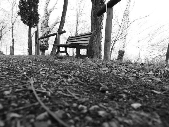 Beauty In Nature Bench Bench Seat Day Grass Nature No People Outdoors Panchina Panchinavuota Scenics Sky Surface Level Swing Tranquil Scene Tranquility Tree Tree Trunk