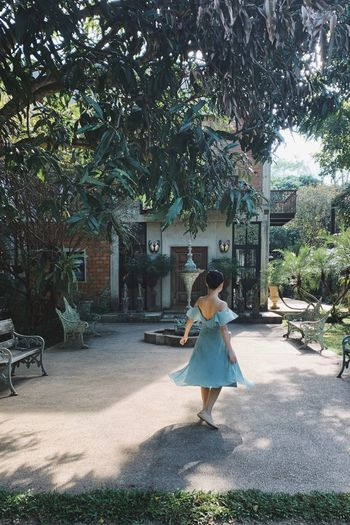 PhonePhotography Chiangmai Graceful Greendress Dancing Tree Plant One Person Full Length Real People Rear View Casual Clothing Day Outdoors