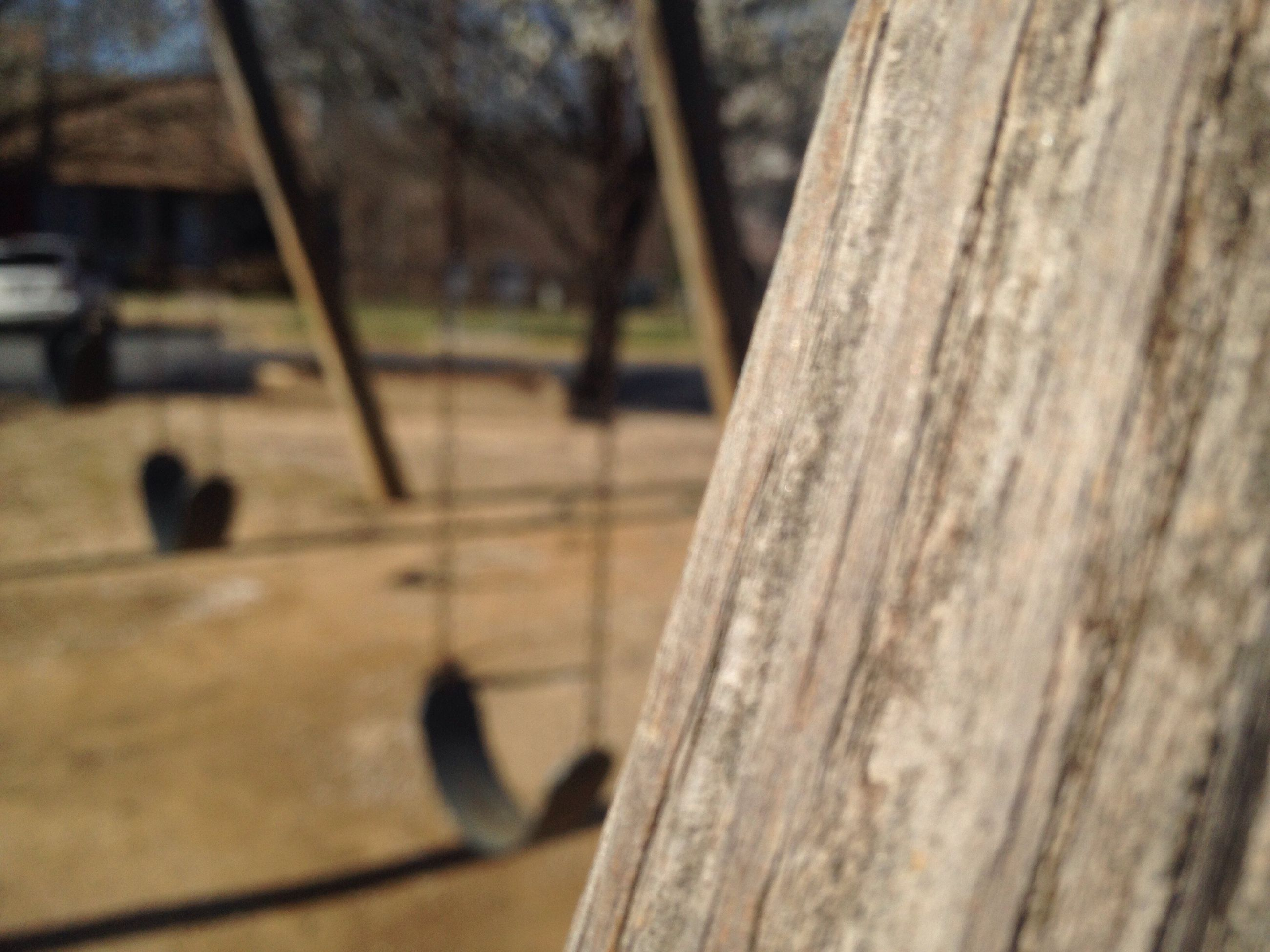 wood - material, focus on foreground, no people, close-up, nature, day, outdoors