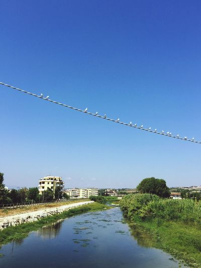 Birds Perching On Cable Over River Against Sky