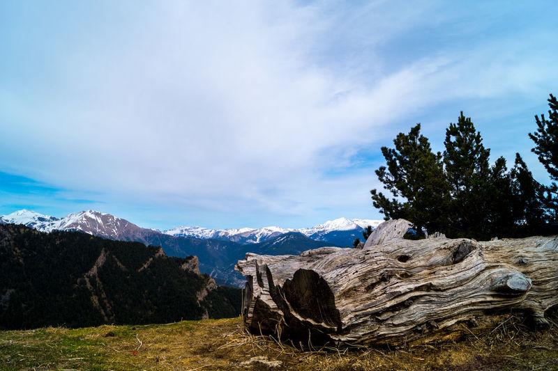 Andorra la bella.