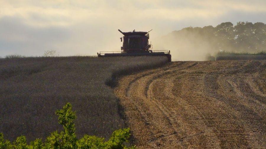 Combine harvester on farm harvesting crops