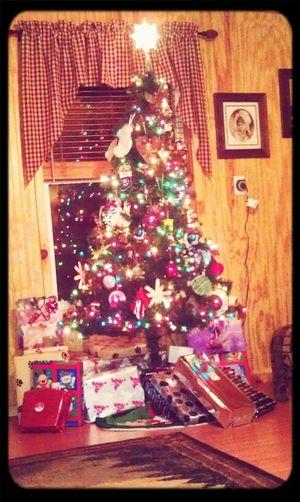 Christmas Tree! :)