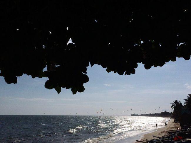 Sea Nature Water Beach Beauty In Nature Scenics Vietnam Phan Thiet No People Leisure Activity