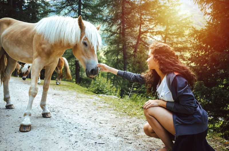 Woman Touching Horse While Crouching Against Trees