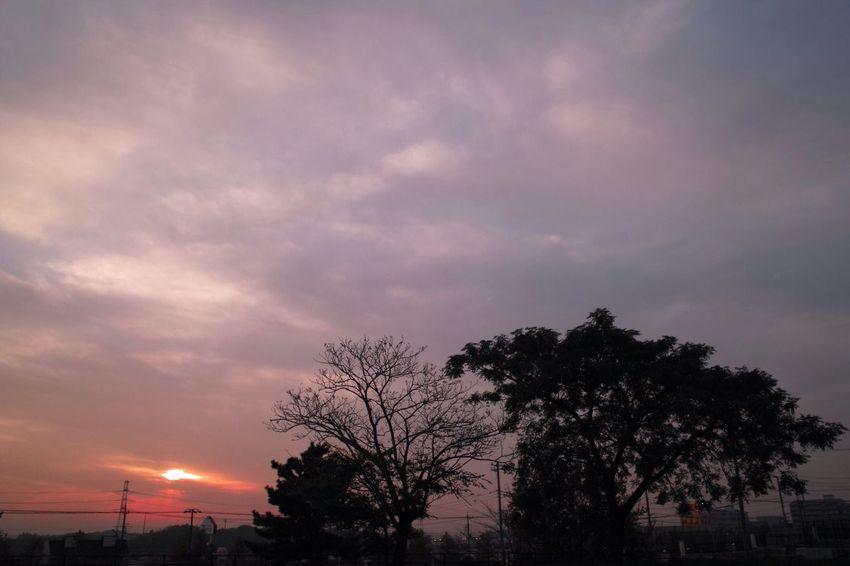 お疲れさまです。 SigmaDP1X 夕暮れ時 Twilight おつかれさま Sunset Afterglow