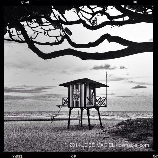 Lifeguard (08/mar/2014) Sea
