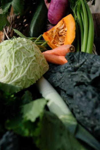 Cabbage Carrot Celery Close-up Day Food Food And Drink Freshness Green Color Healthy Eating Indoors  Kale Leaf Leek No People Onion Pumpkin Raw Food Squash - Vegetable Turnip Tuscan Kale Variation Vegetable Winter Vegetables