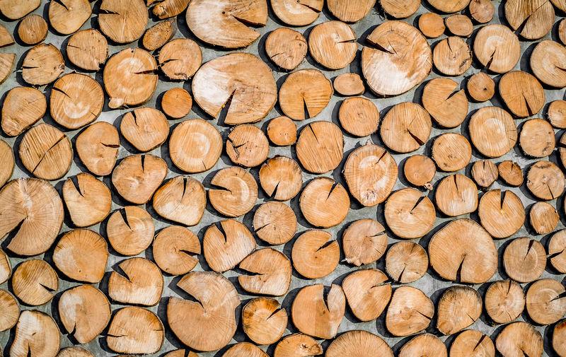 round teak wood stump Teak Wood Round Round Shape Round Teak Teak Teakwood Wood Stump Wooden Background