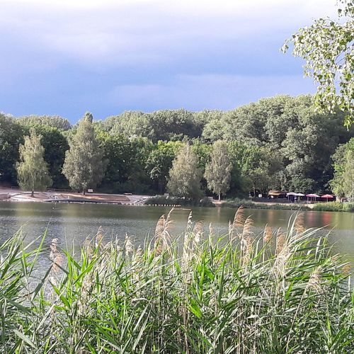 Lake Outdoors Tree Nature Water Plant No People Day Growth Scenics Grass Beauty In Nature Sky Baggersee  Beauty In Nature Ingolstadt Scenic View Thunderclouds Colored Background Light And Shadow Impressionism Leisure Umbrella Beach Lakeside Lakeshore Sommergefühle