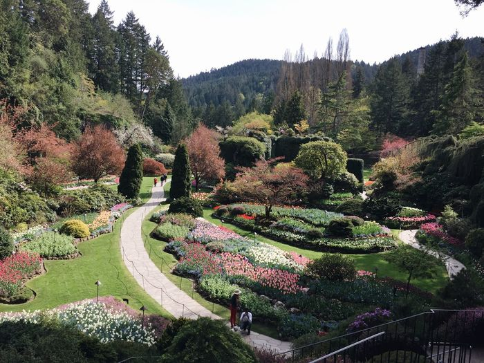 Butchart Gardens First Eyeem Photo