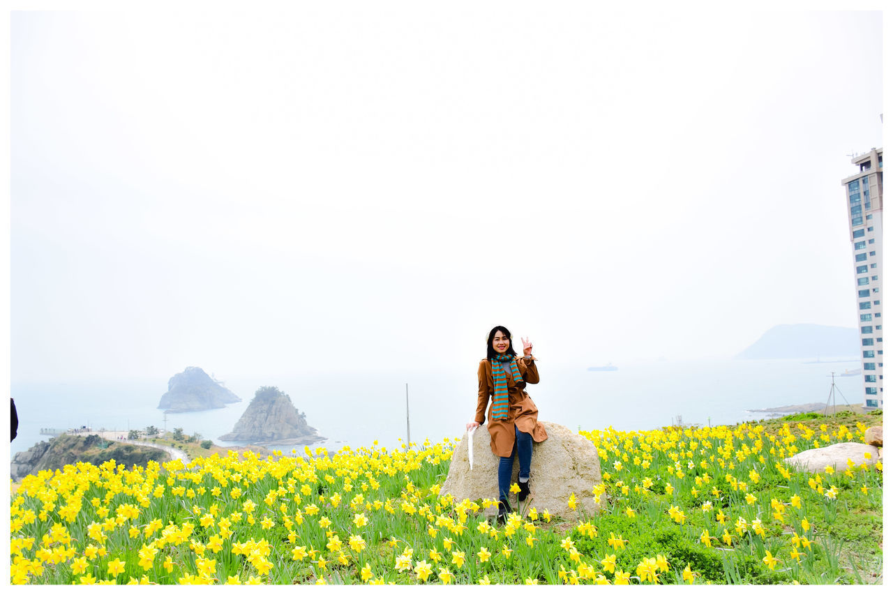 real people, flower, flowering plant, plant, beauty in nature, togetherness, lifestyles, nature, leisure activity, sky, bonding, women, two people, yellow, growth, adult, young adult, young women, men, copy space, couple - relationship, outdoors