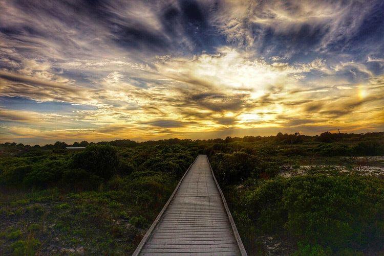 Taken at Washingtonoaksgardensstatepark Florida on my Sony A6000 GTBIV_photography Posterart Landscape Art Photography Beach Photography Beachy
