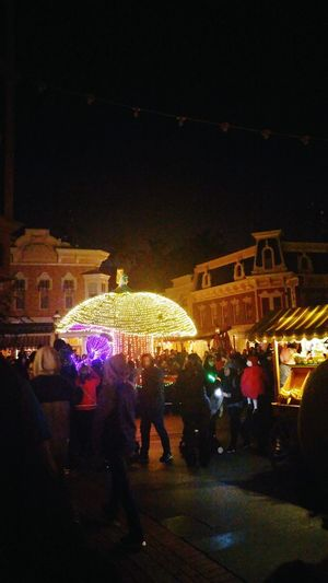My view. Main Street Electrical Parade