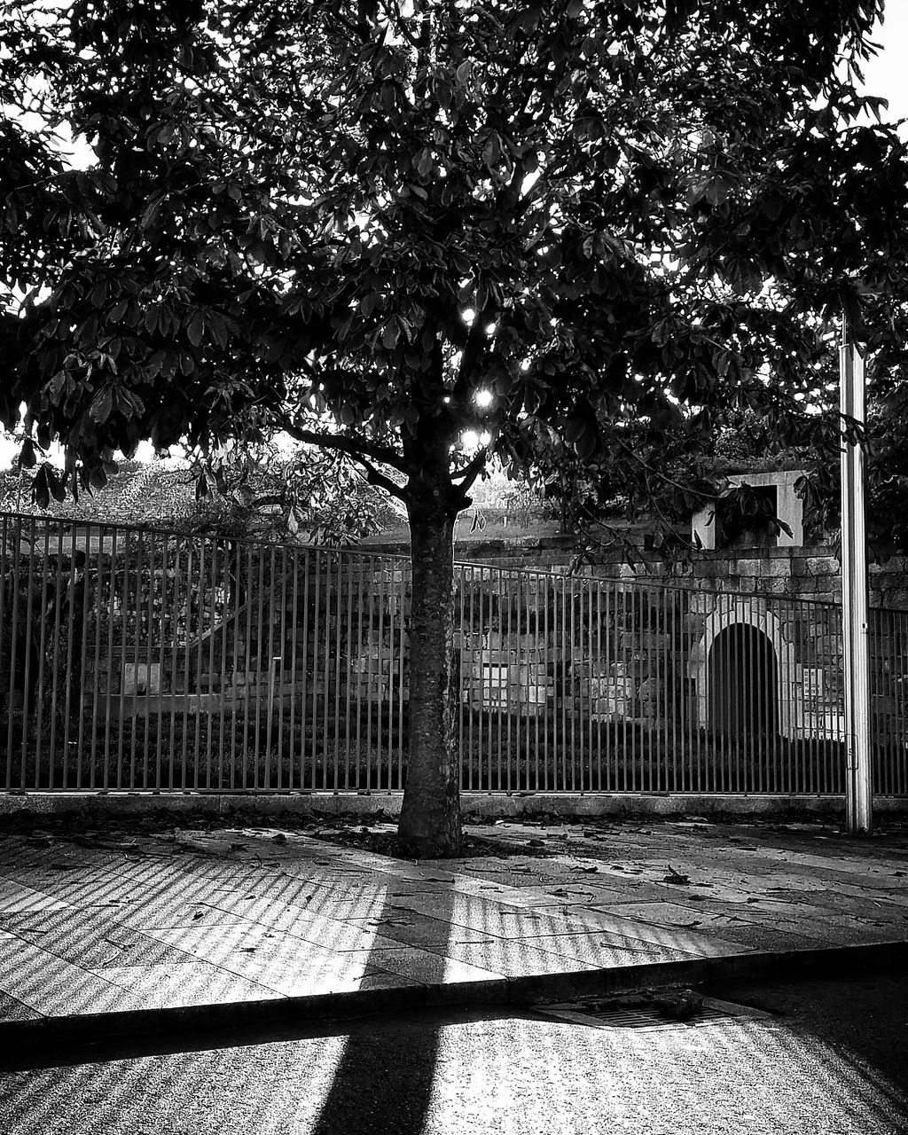 outdoors, shadow, tree, day, built structure, sunlight, protection, no people, architecture, building exterior, walkway, sky