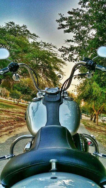 Motorcycles Harley Street Bob Harley-Davidson Harleydavidson Park