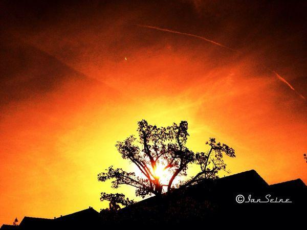 Sunrise Sky_collection Sun_collection Eye4photography