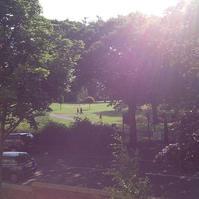 Sunshine Sun Summer AlbertPark boro view flat