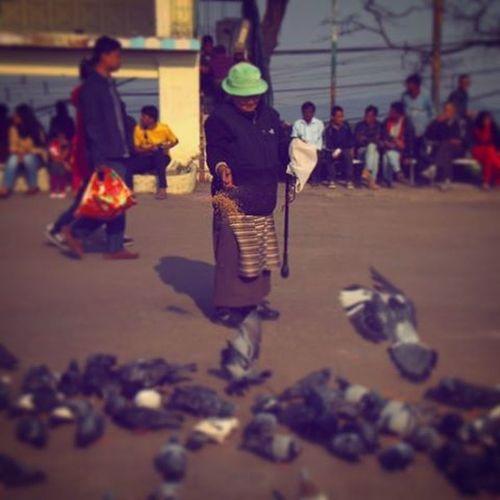 Darjeeling Oldlady Givingfood