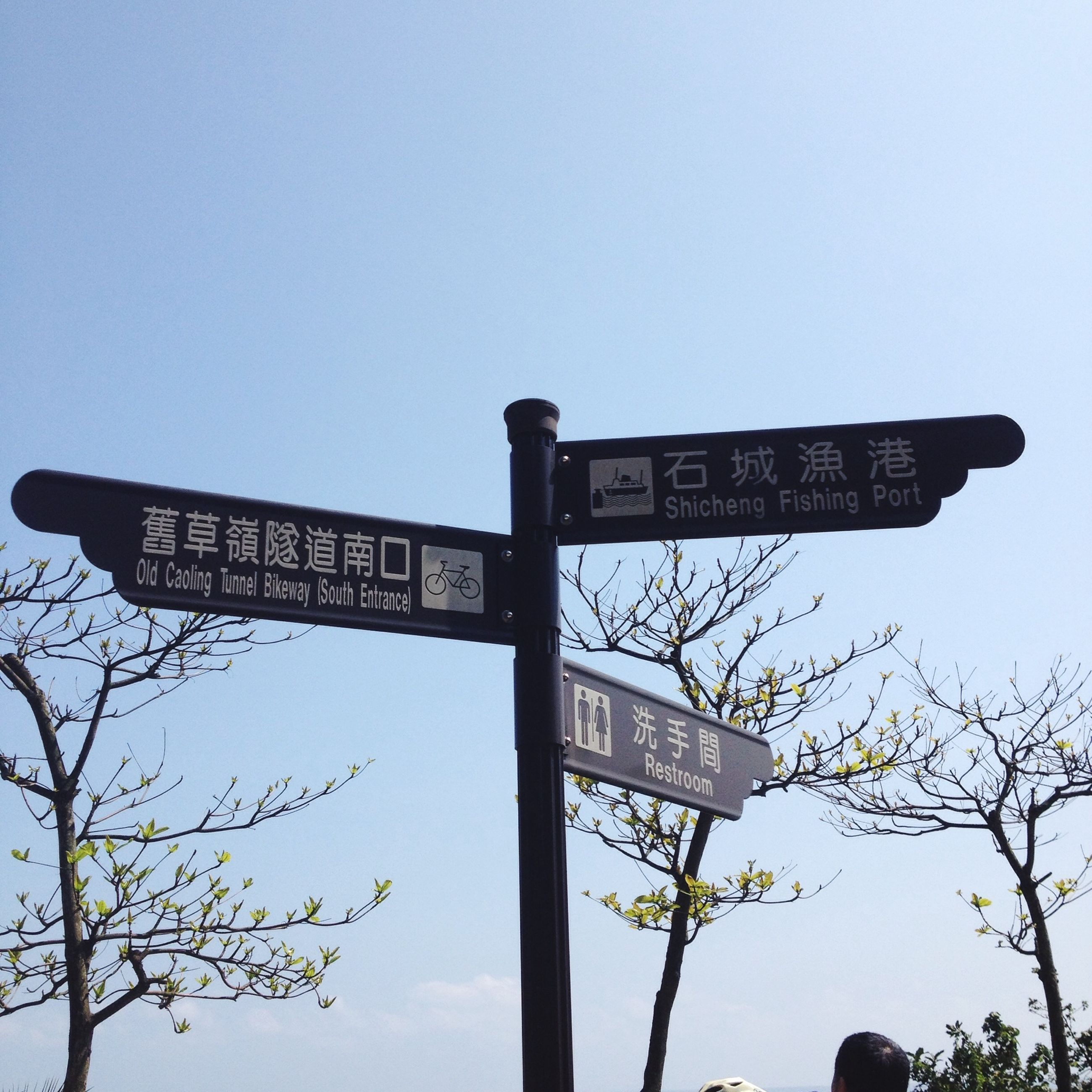 low angle view, text, communication, clear sky, western script, guidance, information sign, information, sign, directional sign, road sign, tree, direction, copy space, arrow symbol, capital letter, pole, sky, non-western script, street light