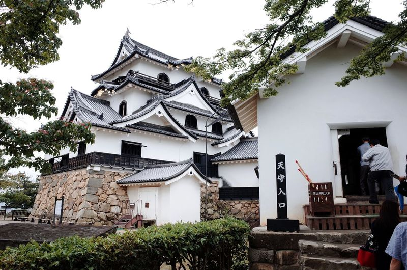 Hikone Hikone Castle Building Exterior Built Structure Traditional Building 天守閣 彦根城