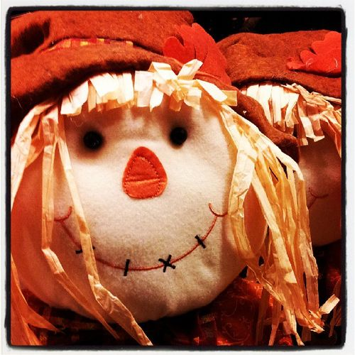 Halloween is coming!!! Boo Halloween Harvest Thegreatergood