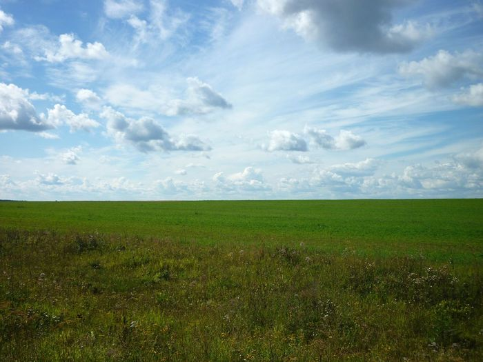 Between heaven and earth Sky Cloud - Sky Clouds And Sky Clouds Summer Green Plant Agriculture Field Crop  Nature Rural Scene Landscape Cloud - Sky Green Color Day No People Scenics Beauty In Nature Tranquility Outdoors Blue Sky Grass Meadow