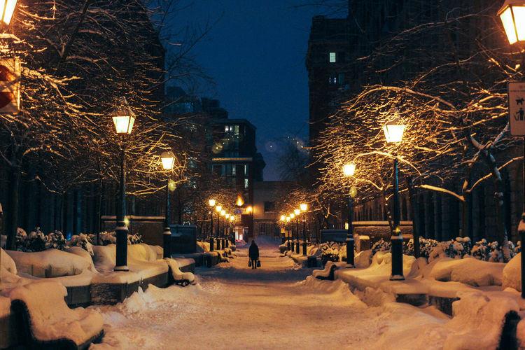 Illuminated snow covered walkway at night
