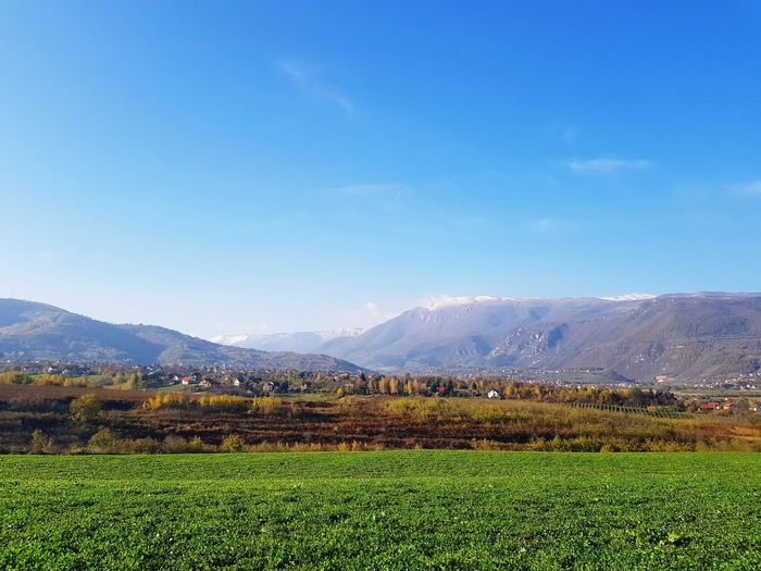Agriculture Vegetable Rural Scene Growth Field Mountain No People Nature Freshness Day Beauty In Nature Food Outdoors Sky Water Tea Crop Grass Snow Snowcapped Mountain