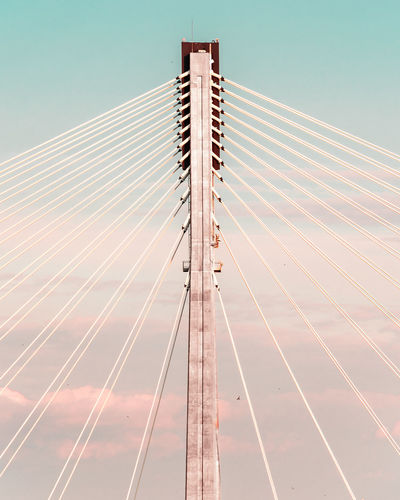 Warsaw Symmetry Poland Polska Warsaw Warszawa  Architecture Bridge Bridge - Man Made Structure Built Structure City Clear Sky Day Engineering Modern Sky Suspension Bridge Symmetry