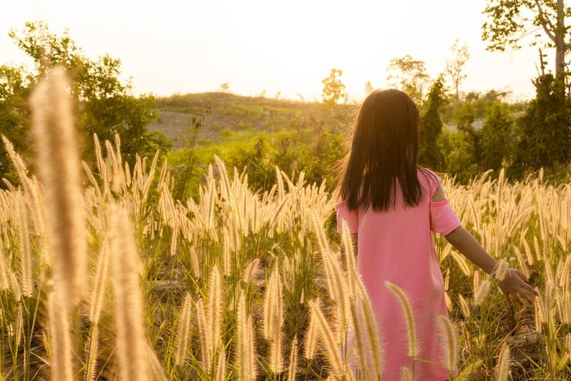 Running in the golden grass field in the evening Play Flower Glass Sunset Plant Rear View Sky Women One Person Leisure Activity Growth Lifestyles Field Beauty In Nature Nature Land Standing Adult Hairstyle Hair Casual Clothing Sunlight Outdoors