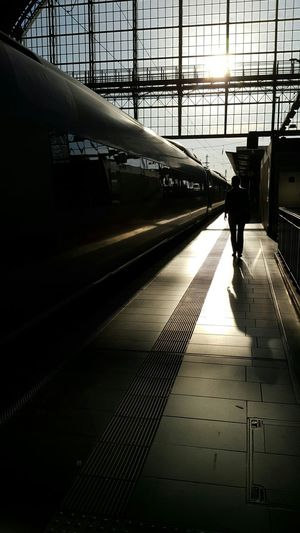 Silhouette Walking People Adult Shadow One Person Architecture Train Train Station Evening Light Evening Sun On My Way On My Way Home City Life Platform