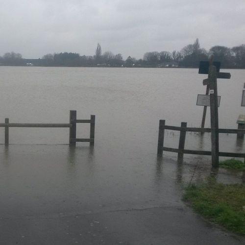 Lake runnymede Thamesflooding Runnymede