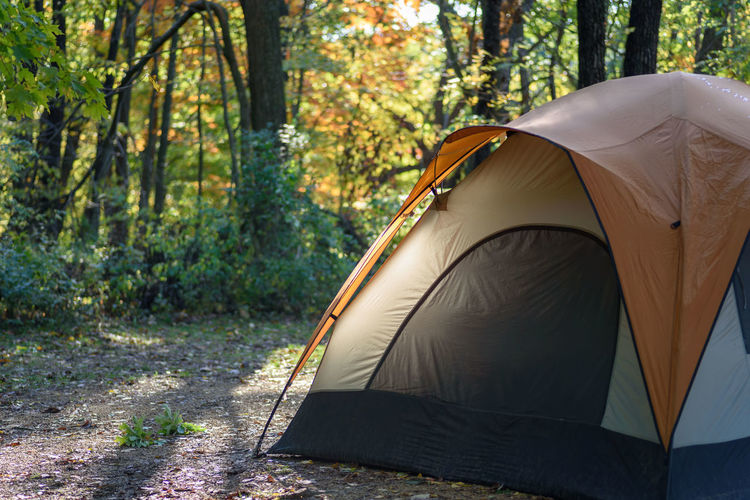 Morning light shining on side of tent on fall camping trip Camping Camping Life Campsite Fall Colors Morning Light Wisconsin Adventure Beauty In Nature Camping Camping Trip Day Fall Camping Forest Forest Photography Mirror Lake Nature No People Outdoors Park Shelter State Park  Tent Tranquility Tree Woods